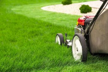 Lawn-Mowing-Mistakes