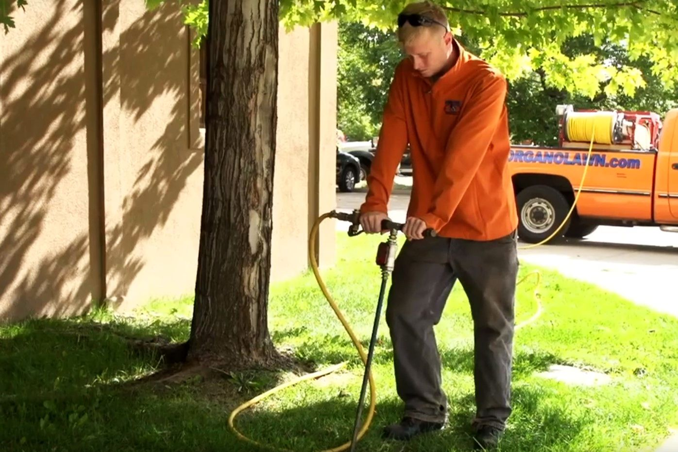 Spring Tree Fertilization